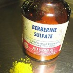 Berberine Supplement Bottle