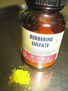 Berberine Supplement Bottle